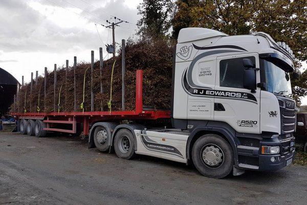 birch-brushwood-on-artic-trailer